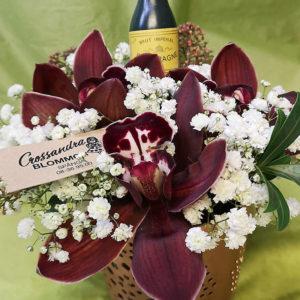 Fest Arrangemang Bukett Crossandras Blommor