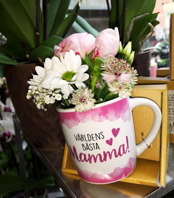 mugg världens bästa mamma mors dag